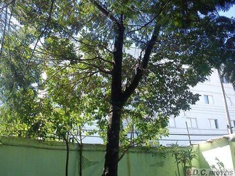 Prédio à venda em Guarulhos (V Gopouva), 6 dormitórios, 5 banheiros, 2 vagas, 480 m2 de área útil, código 29-350 (foto 15/18)