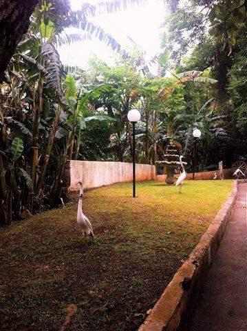 Casa à venda em Guarulhos (Recreio São Jorge), 2 dormitórios, 2 banheiros, 7 vagas, 2.000 m2 de área total, código 29-680 (foto 5/10)