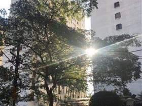 Apartamento à venda em São Paulo, 2 dorms, 2 wcs, 75 m2 úteis