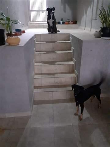 Casa em Guarulhos (V Hulda - Picanço), 2 dormitórios, 1 banheiro, 2 vagas, 125 m2 de área útil, código 29-984 (foto 2/11)