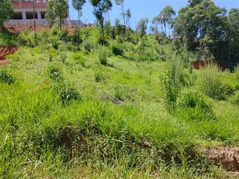 Terreno à venda em Mairiporã (Tapera Grande), 1.134 m2 de área útil, código 308-17 (foto 3/4)